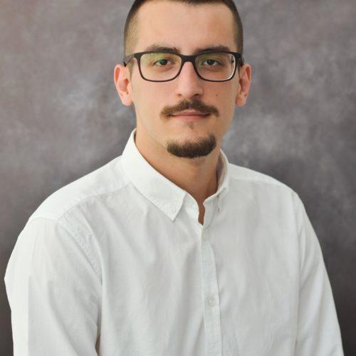 Haris Arnautović